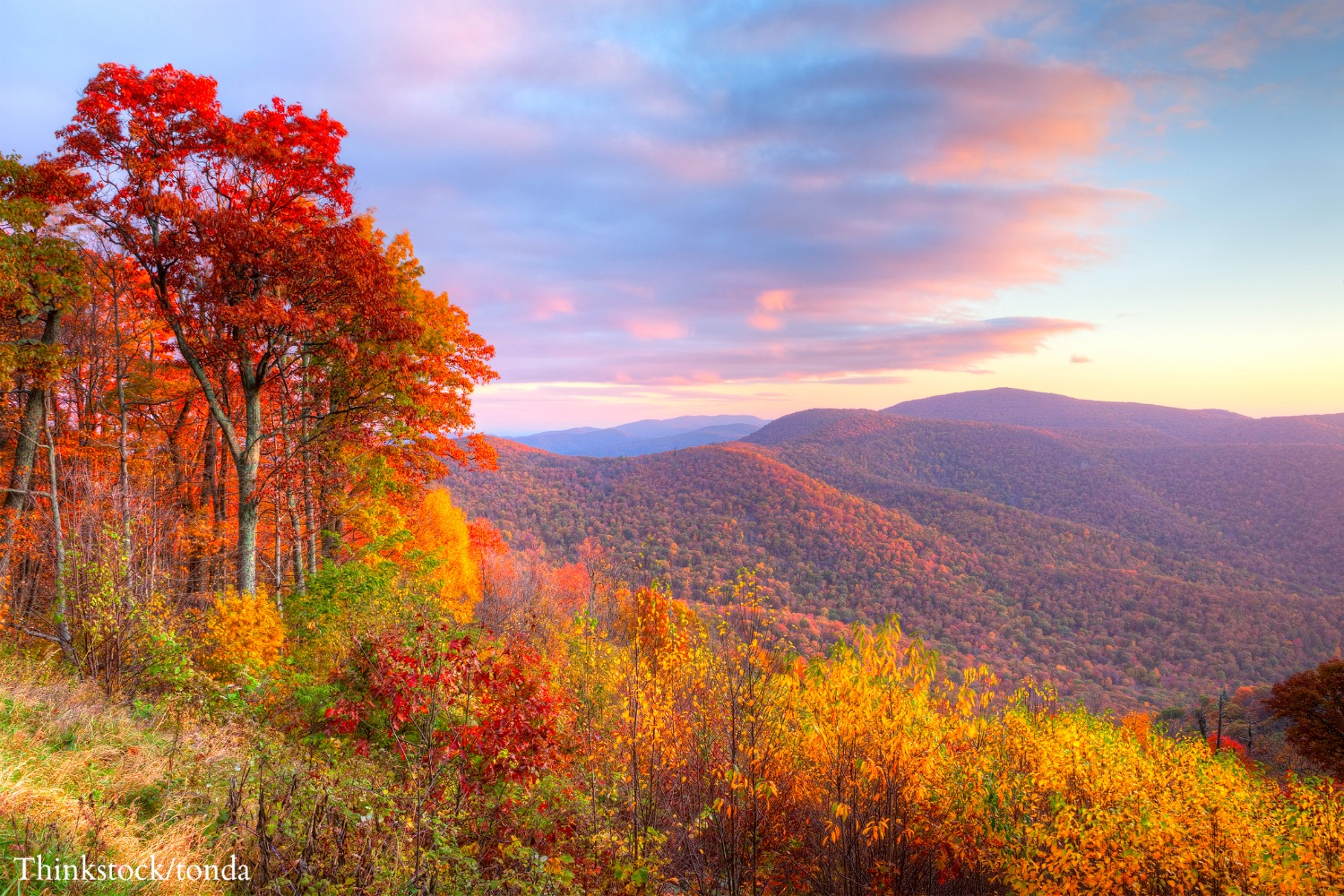 5 Of The Best Shenandoah Hiking Trails To Explore This