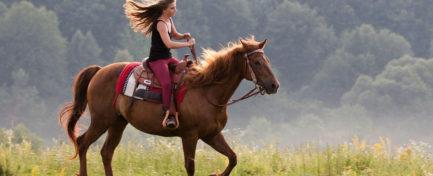Enjoy a trail ride with Double H Stable | Woman riding a horse in a meadow