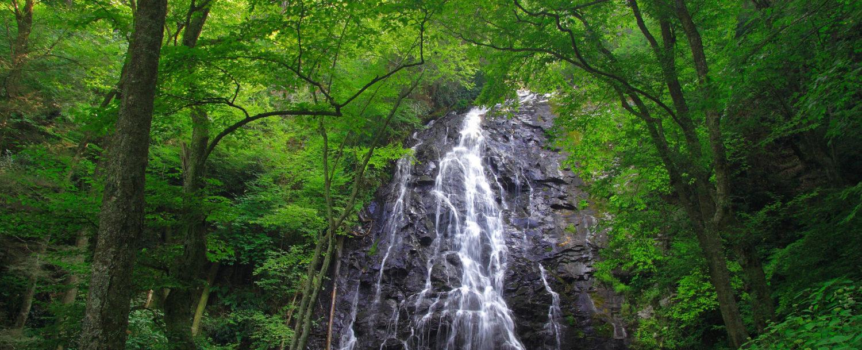 Virginia Blue Ridge Parkway Stop | Crabtree Falls