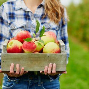 Rinker Orchards